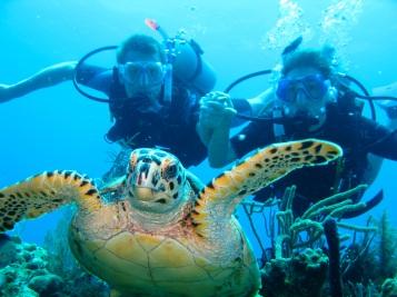 Diving off Roatan, Honduras in 2009
